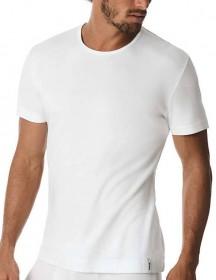 t-shirt Calgari Y